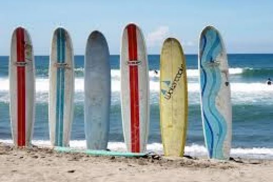 surfboards, skimboard, supboard, bodyboard og paddleboard kategori billed